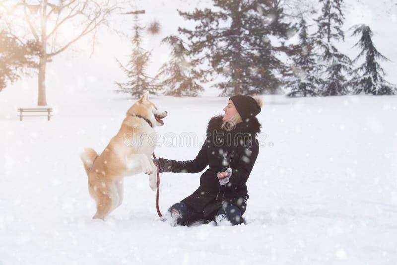 Młoda kobieta i jej psi Akita bawić się w parku na śnieżnym dniu obraz royalty free