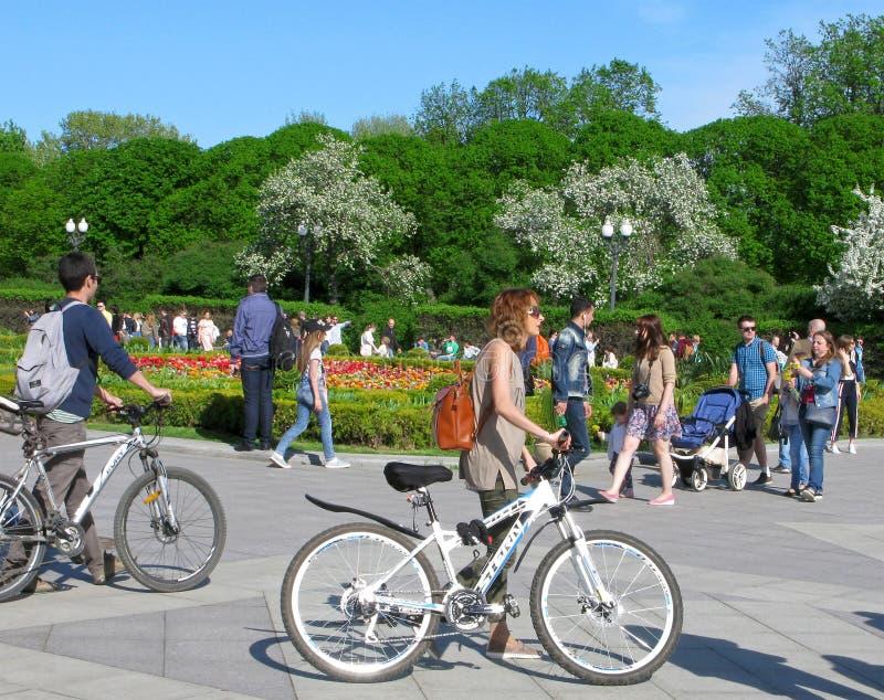 Młoda kobieta i mężczyzna z bicyklami w miasto parku zdjęcie stock