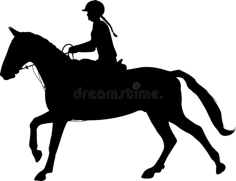 Młoda kobieta jeździeckiego konia sylwetka dressage equestrian ko?scy konie target491_1_ polo je?dz?w sylwetki bawj? si? wektor E ilustracja wektor