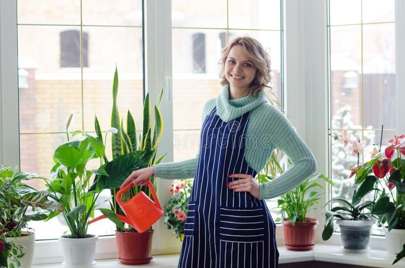Młoda kobieta kultywuje do domu rośliny fotografia stock