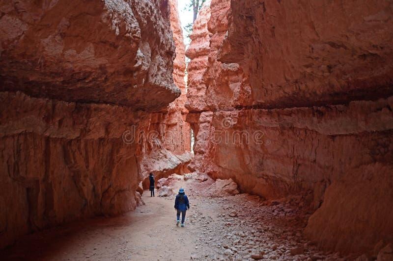 Młoda kobieta na Navajo pętli śladzie w Bryka jarze obraz royalty free