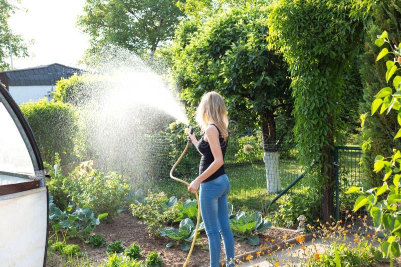 Młoda kobieta nalewa jej ogród zdjęcie stock
