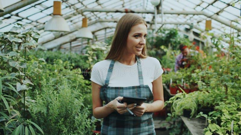 Młoda kobieta pracuje w ogrodowym centrum Atrakcyjni dziewczyny obliczenia i czeka kwiaty używać pastylka komputer podczas pracy  obrazy royalty free