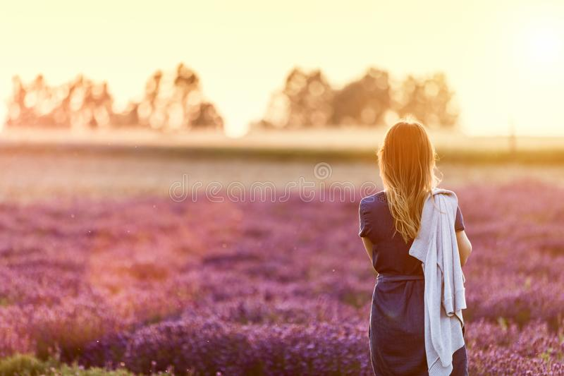 Młoda kobieta relaksuje patrzeć na lawendy polu przy zmierzchem zdjęcie stock