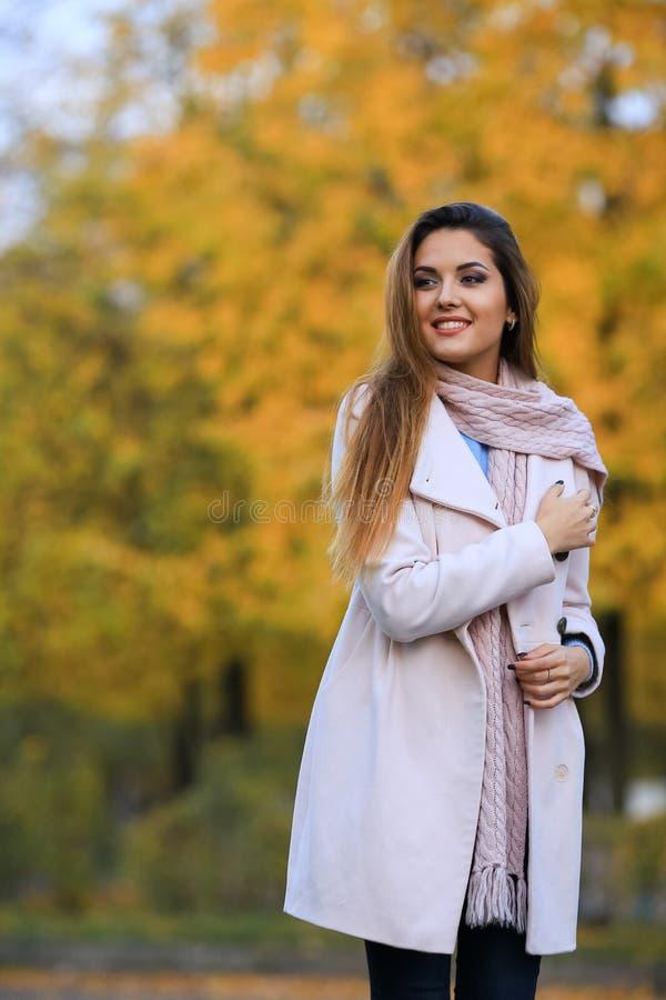 Młoda kobieta spadku klonu ogródu żółty tło jesień kobieta piękna parkowa na terenach odkrytych portret piękna uroda makijaż oczu zdjęcia stock