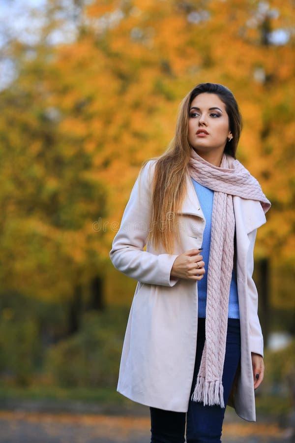 Młoda kobieta spadku klonu ogródu żółty tło jesień kobieta piękna parkowa na terenach odkrytych portret piękna uroda makijaż oczu zdjęcie stock