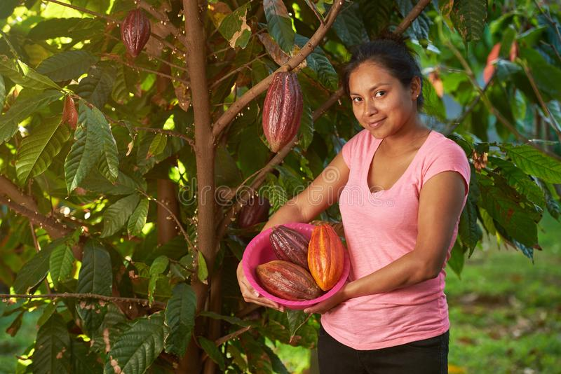 Młoda kobieta stojak z cacao strąkami zdjęcie stock