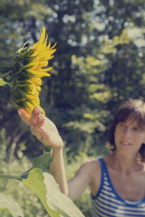 Młoda kobieta w obdzierającym koszulowym macaniu piękny kwitnący sunf obraz royalty free