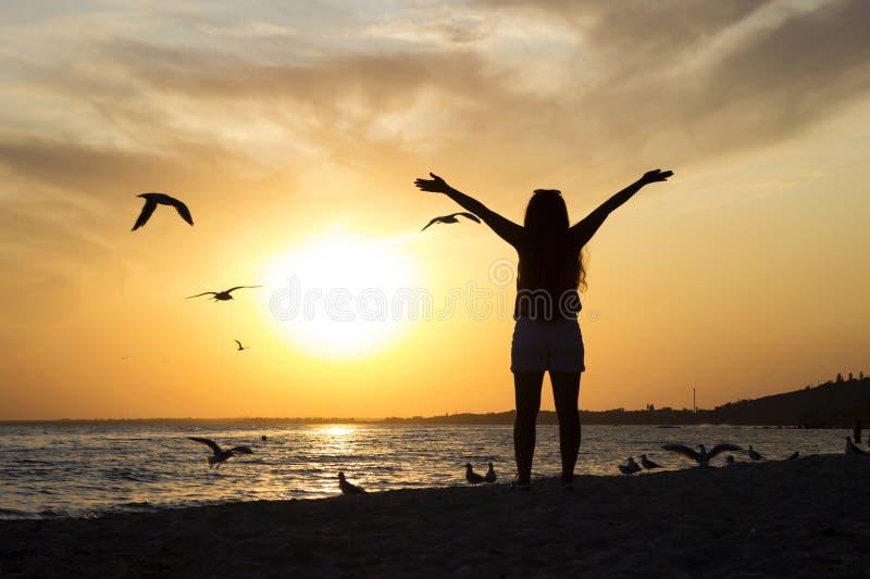 Młoda kobieta w szortach i koszulka stoją w zachodzie słońca na tle morza z rękami w górze, mewy są obraz royalty free