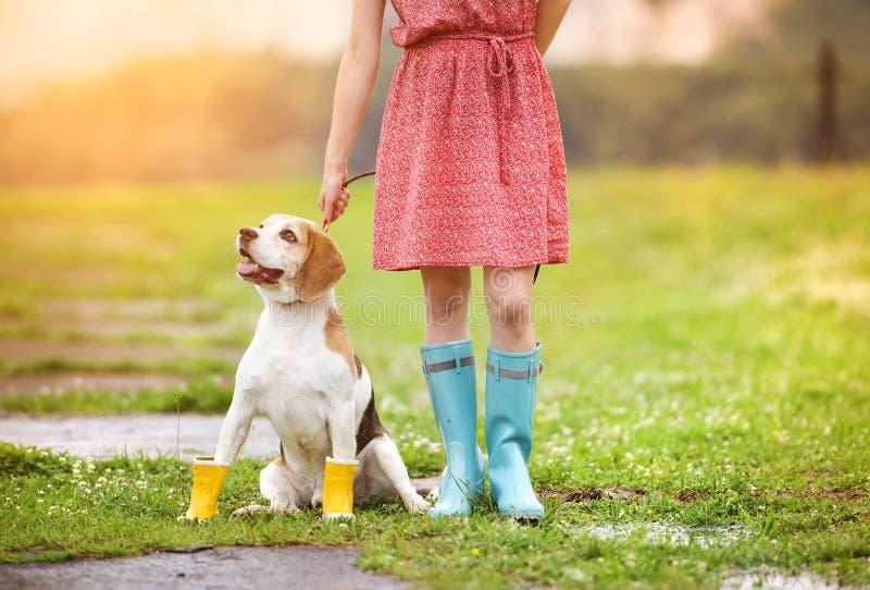 Młoda kobieta w wellies chodzi jej psa zdjęcia royalty free