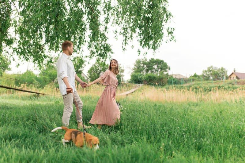 Młoda kochająca para ma zabawę i bieg na zielonej trawie na gazonie z ich ukochanym domowym psem hodujemy Beagle i a obraz royalty free