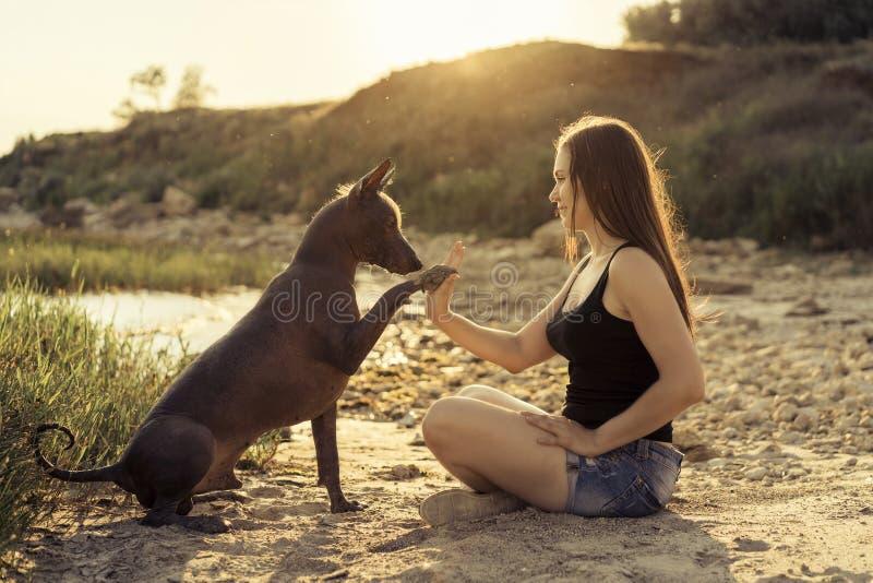 Młoda piękna dziewczyna bawić się z psem, daje łapie, na piaskowatej plaży przy zmierzchem obraz stock