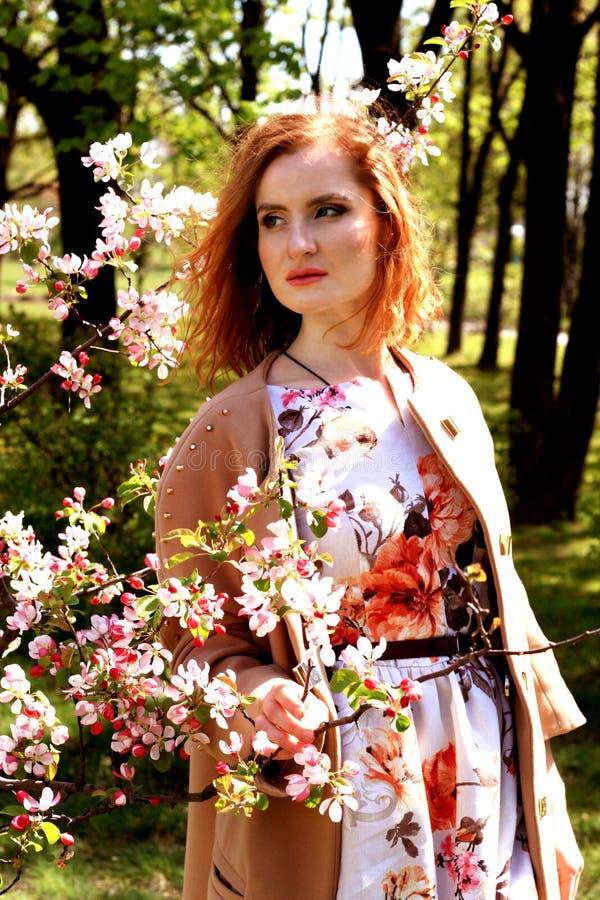 Młoda piękna dziewczyna w jabłczanym sadzie Portret miedzianowłosa dziewczyna obraz royalty free