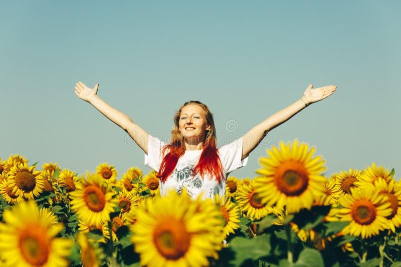 Młoda Piękna dziewczyny pozycja W słonecznikach I dźwiganie rękach Up Wolność stylu życia Plenerowy pojęcie obraz stock