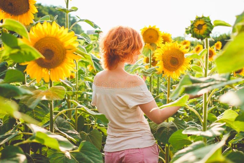 Młoda redheaded kobieta w polu słoneczniki stoi z powrotem, tyły fotografia stock