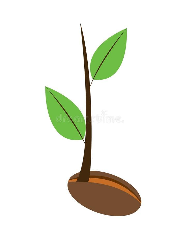 Młoda roślina ilustracja wektor