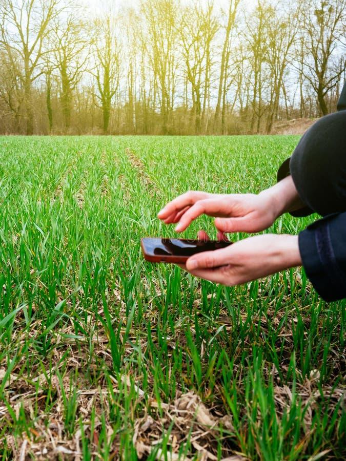 Młoda rolnictwo kobiety biolożka analizuje ziemię i żniwo zdjęcia stock