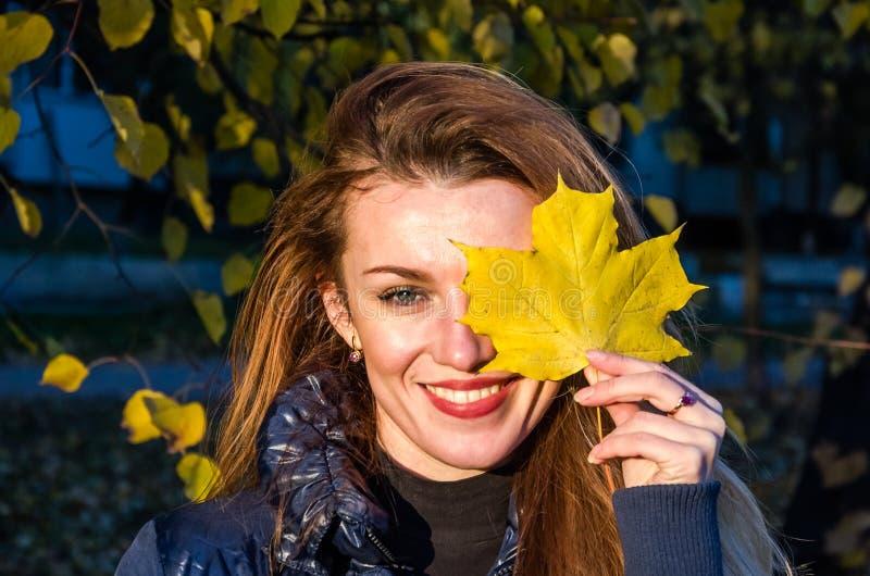 Młoda rozochocona śliczna dziewczyny kobieta bawić się z spadać jesień kolorem żółtym opuszcza w parku blisko drzewa, roześmiany  zdjęcie stock