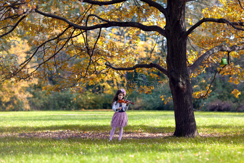 Młoda skrzypaczka zdjęcie royalty free