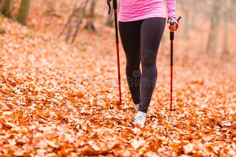 Młoda sporty dziewczyna robi ćwiczeniom w lesie zdjęcie stock