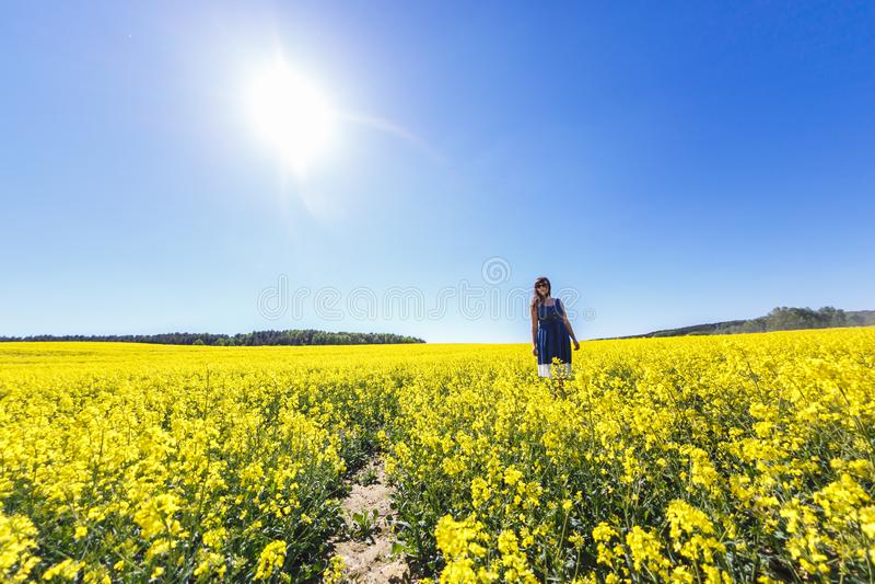 Młoda szczęśliwa piękna duża rozmiaru modela dziewczyna w błękit sukni na kwitnącym rapeseed polu w lecie Pod??a ja poj?cie obraz royalty free