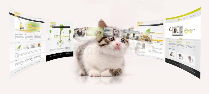 Młoda technologia fotografia stock