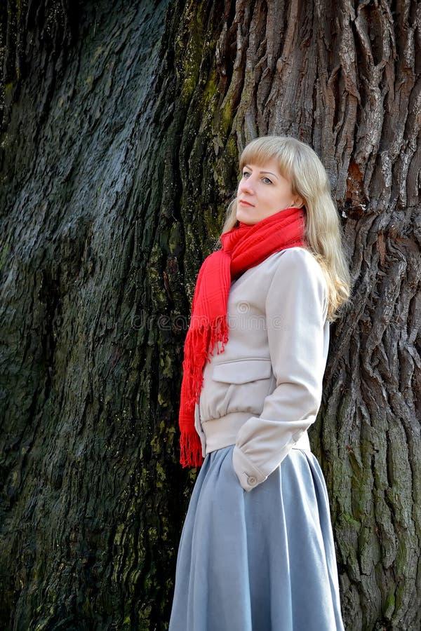 Młoda zadumana kobieta kosztuje z ukosa przeciw tłu drzewo fotografia stock
