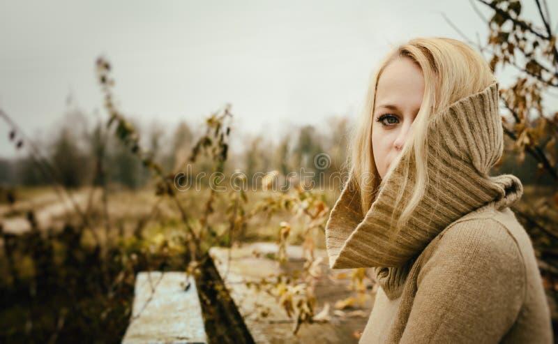 Młoda zmysłowa dziewczyny blondynka w wietrznym spadku outdoors zdjęcia stock