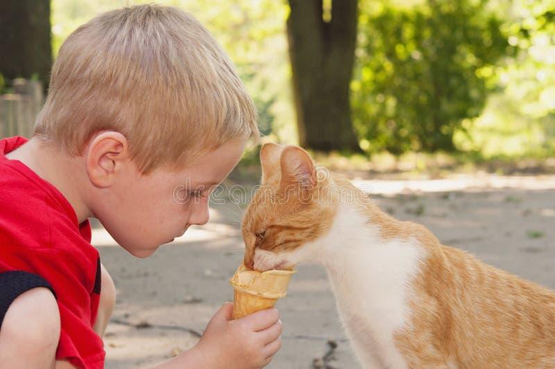 Młode dziecko karm kot jego lody rożek zdjęcia royalty free