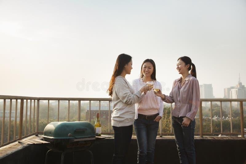 Młode Kobiety Wznosi toast Each Inny na dachu przy zmierzchem fotografia stock