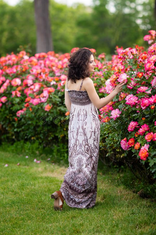 Młode piękne kobiety chodzi w ogródzie różanym, pełny ciało portret, ciemnego brązu włosy, brunetka obraz stock