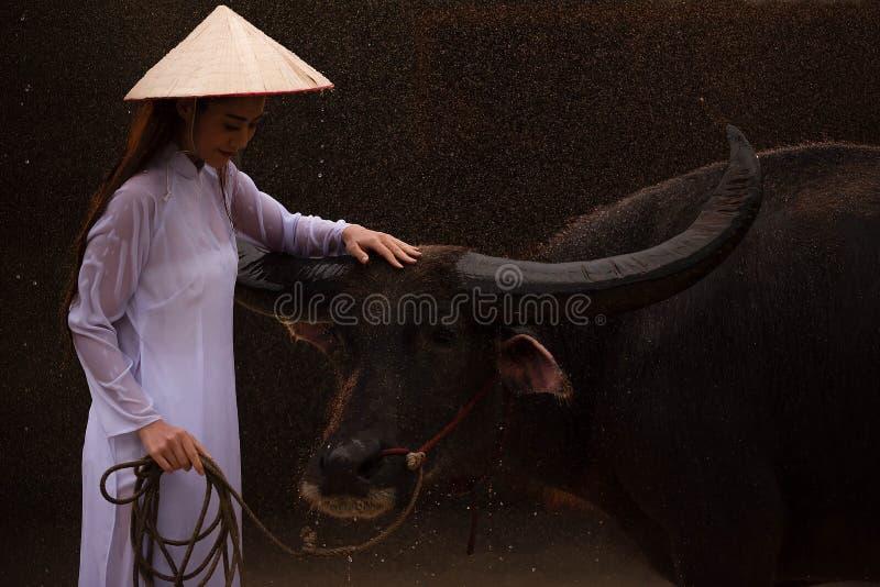 Młode piękne kobiety w bielu ubierają pozycję z bizonem pod padać zdjęcie royalty free