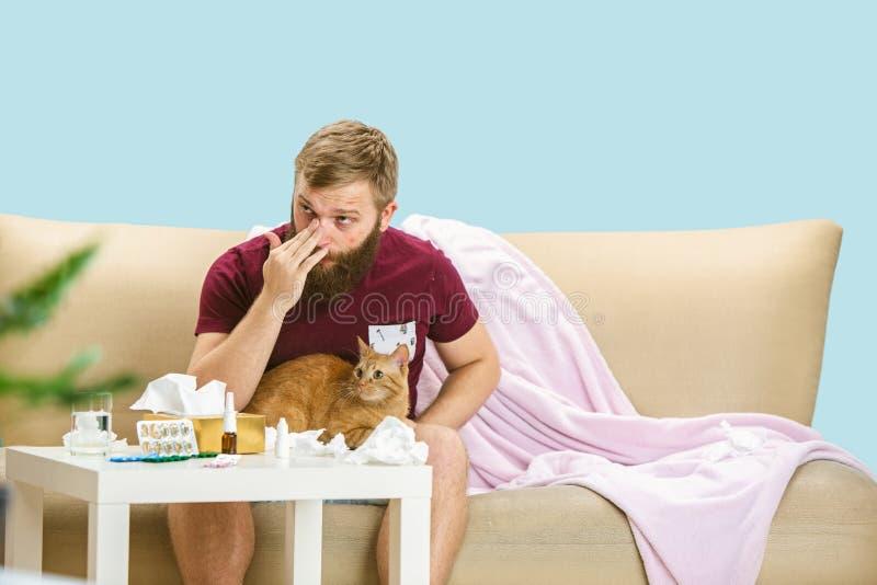 Młodego człowieka cierpienie od alergii kota włosy obraz royalty free