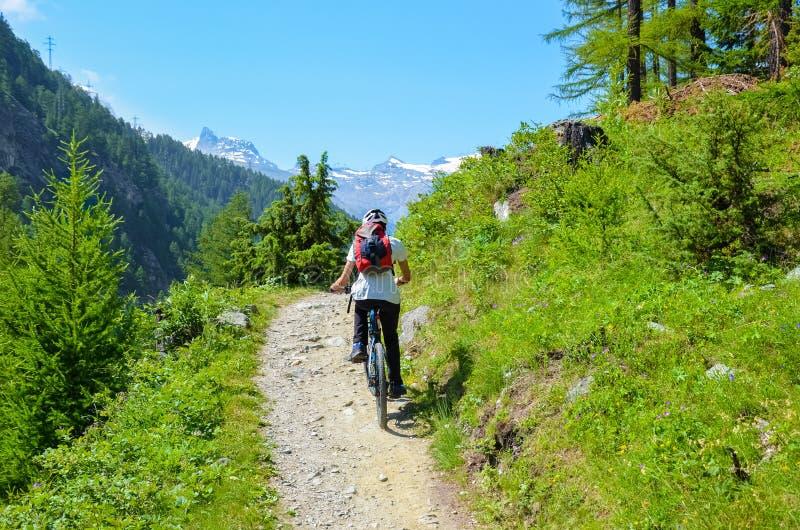 Młodego człowieka jeździecki bicykl w pięknym górkowatym krajobrazie Szwajcarscy Alps blisko do sławnego Zermatt na terenach odkr zdjęcia stock