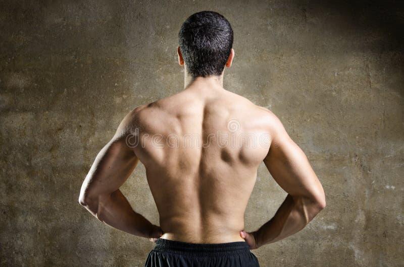 Młodego człowieka mięśnia plecy portret zdjęcia stock