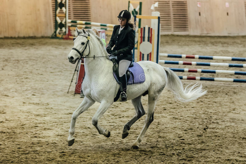 Młodej dziewczyny atleta na koniu przez pole przy sportami powikłanymi obrazy royalty free