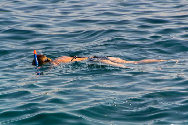Młodej dziewczyny dopłynięcie w morzu obrazy royalty free