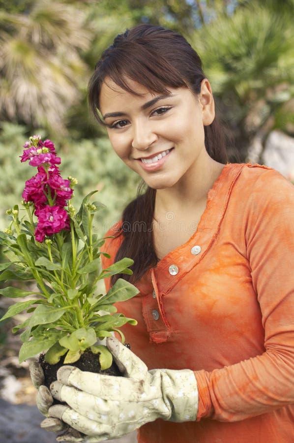 Młodej Kobiety mienia kwiatu roślina fotografia royalty free