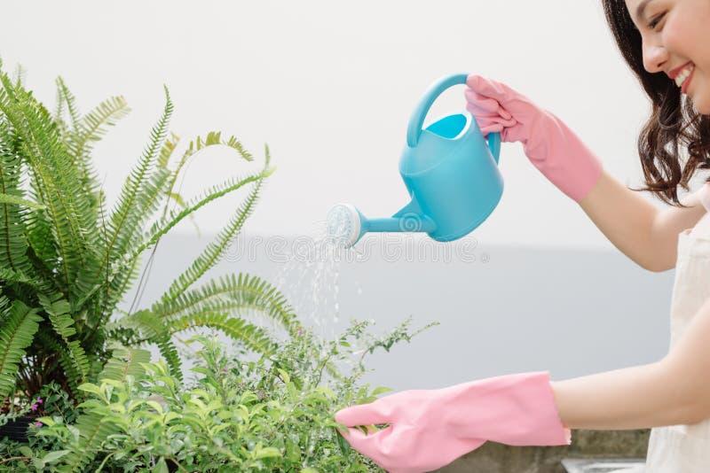 Młodej kobiety podlewania rośliny w gospodarstwo rolne ogródzie fotografia stock