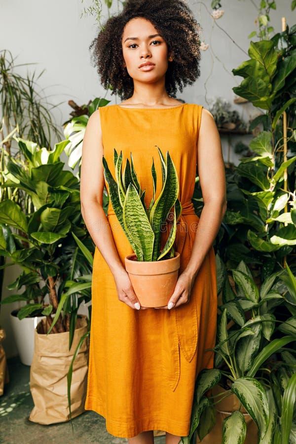 Młodej kobiety pozycja w roślina sklepie obrazy stock