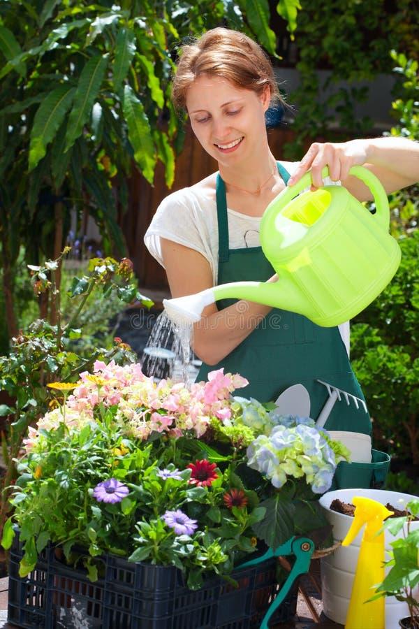 Młodej kobiety uprawiać ogródek plenerowy fotografia royalty free