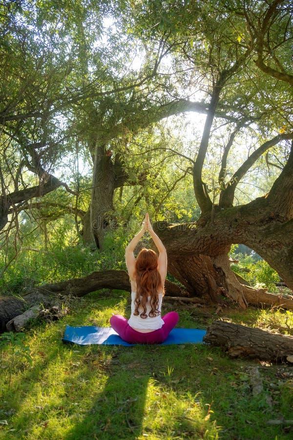 Młodej uroczej rudzielec długowłosa seksowna kobieta w tylnym widoku robi joga ćwiczy z rękami i sprostać w naturze w lesie zdjęcia royalty free