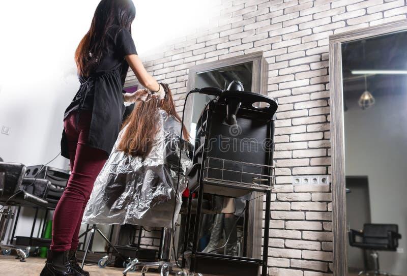 Młody żeński stylista gruntownie farbuje włosy młoda kobieta z obrazy stock