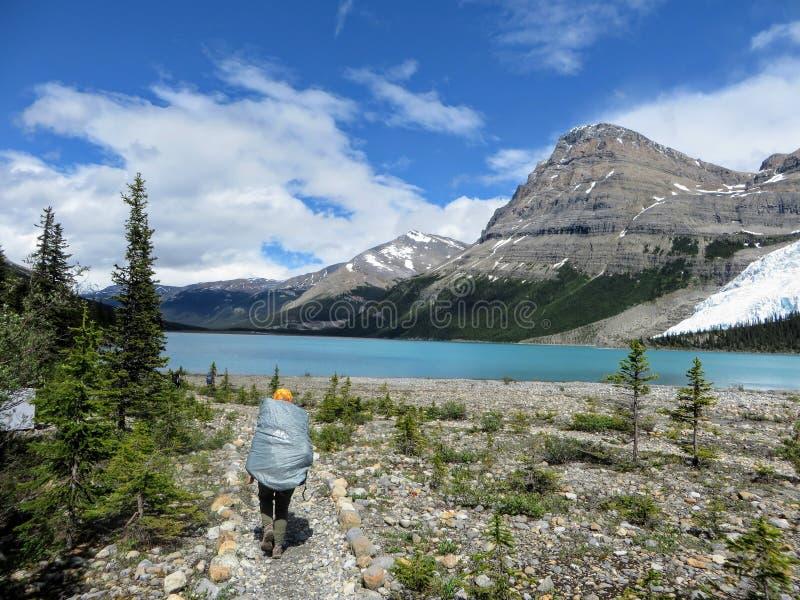 Młody żeński wycieczkowicz wycieczkuje wzdłuż góra lodowa Jeziornego śladu zdjęcie royalty free
