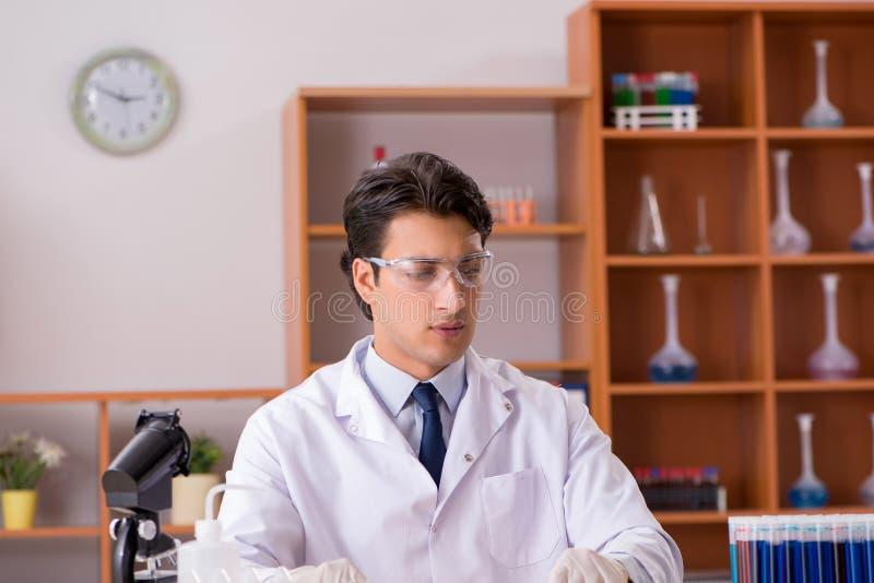 Młody biochemik pracuje w lab fotografia stock