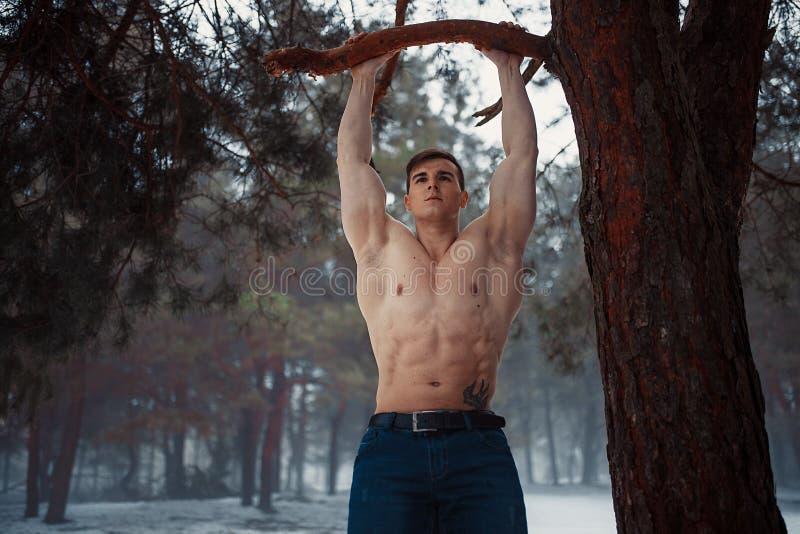 Młody bodybuilder z nagą półpostacią ciągnie up na gałąź w lesie w zimie Ciała dębienie zdjęcie stock