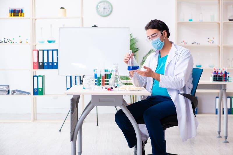 MÅ'ody chemik pracujÄ…cy w laboratorium obraz royalty free