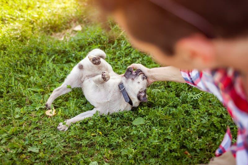 Młody człowiek bawić się z mopsa psa obsiadaniem na trawie Szczęśliwy szczeniak ma zabawę z mistrzem fotografia stock