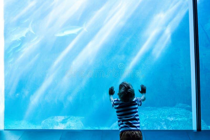 Młody człowiek dotyka gigantycznego zbiornika obraz stock