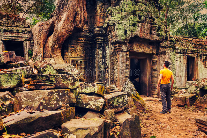 Młody człowiek podróż w świątynnym Ta prohm - Angkor Wat, Siem Przeprowadza żniwa, Kambodża fotografia stock